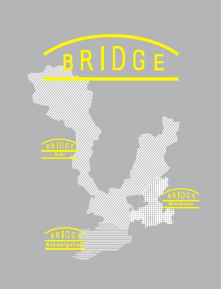 bridge_visual